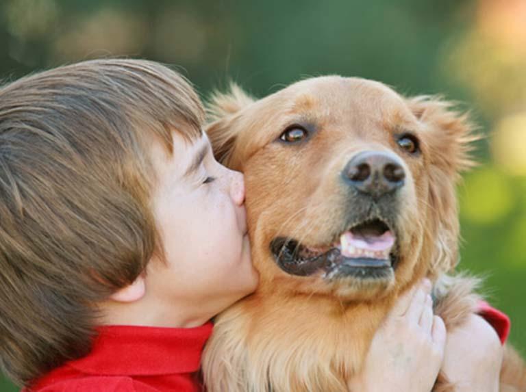 Los perros y niños tienen el mismo nivel de sensibilidad