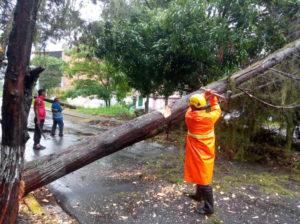 Autoridades se mantienen en alerta ante las lluvias en Trujillo